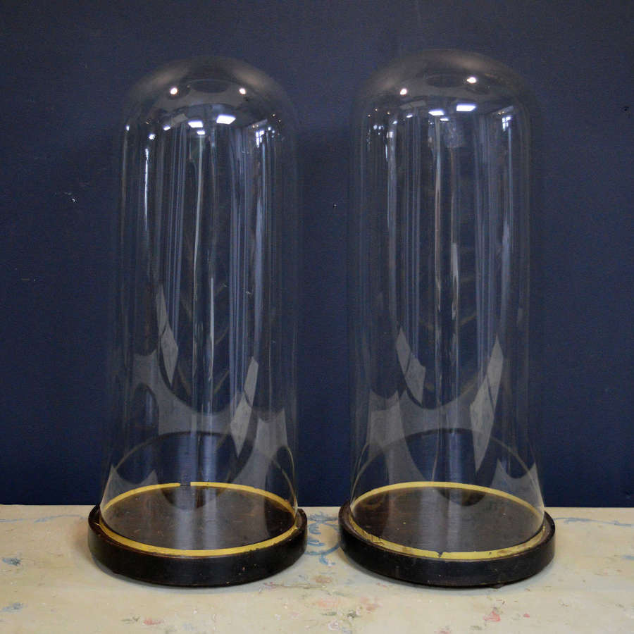 Large Pair of 19th Century Glass Domes